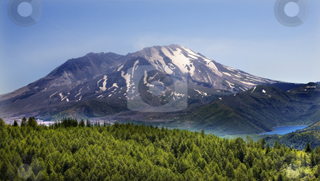 Forest Lake Mount Saint Helens National Park Washington stock photo, Forest Blue Lake Snowy Mount Saint Helens Volcano National Park Washington by William Perry