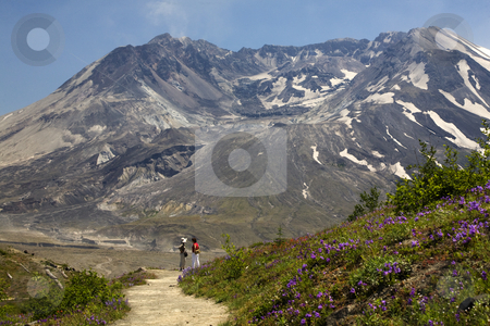 Hiking Mount Saint Helens National Park Washington  stock photo, Hiking Mount Saint Helens Volcano National Park Washington Looking at Caldera with lava cap by William Perry