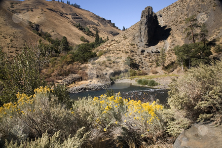 Yakima River and Desert with Yellow Flowers Washington stock photo, Yakima River and Desert with Yellow Flowers, Washington, Northwest by William Perry
