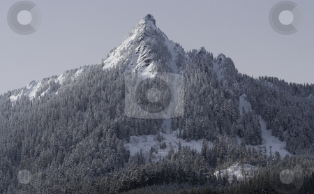 SNOW MOUNTAIN SNOQUALME PASS WASHINGTON stock photo, Snow Mountain Snoqualme Pass Washington by William Perry
