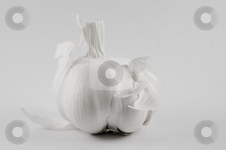 Garlic stock photo, Garlic by Fredrik Elfdahl