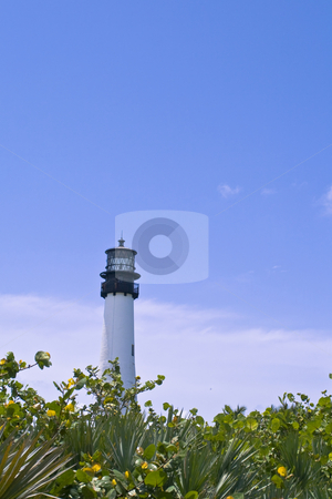 Lighthouse stock photo, A lighthouse on the beach by Fredrik Elfdahl