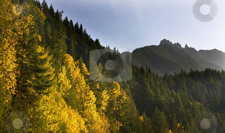Fall Colors Stevens Pass Leavenworth Washington stock photo, Fall Colors Stevens Pass Leavenworth Washington, October 10, 2008 by William Perry