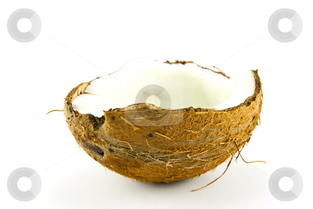 Half a Coconut stock photo, Half a brown hairy coconut on a white background by Keith Wilson