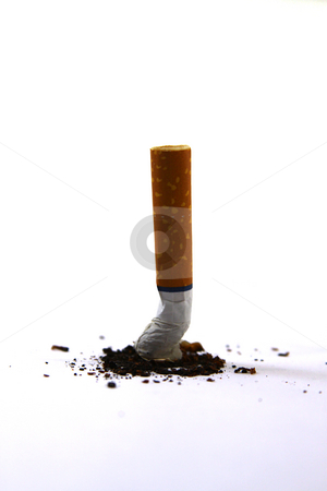 Isolated Cigarette stock photo, Isolated Cigarette Butt with Ashes - Put Out by Mehmet Dilsiz