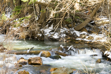 River during Spring stock photo, Flowing water by the River by Mehmet Dilsiz