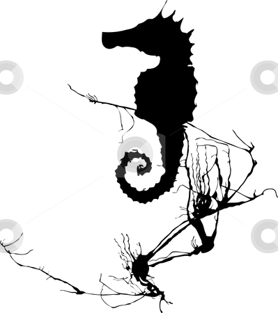 Single Seahorse stock vector clipart, Shadow of a seahorse hiding in the seaweed. by Jeffrey Thompson