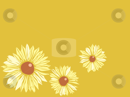 Three Susans stock vector clipart, Floral image of three black-eyed susans against a solid background. Good space for text at top of image. by Jeffrey Thompson