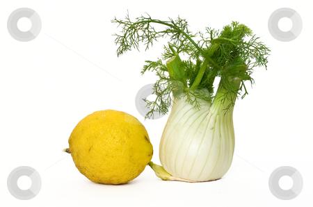 Fennel and lemon  stock photo, Fennel and lemon isolated on white background by ANTONIO SCARPI