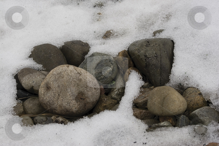 Melting snow stock photo, Snow bank melting revealing rock and plant by Yann Poirier