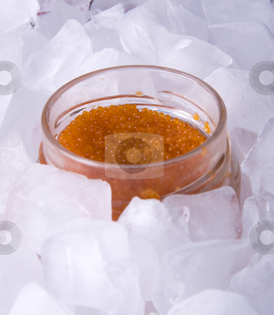 Red caviar on ice stock photo, Red caviar in a glass jar surrounded by ice cubes by Daniel Kafer