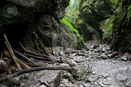 Cracow Gorge in the Tatra Mountains stock photo, Cracow Gorge near Koscieliska Valley in Tatra Mountains, Poland. by Rognar