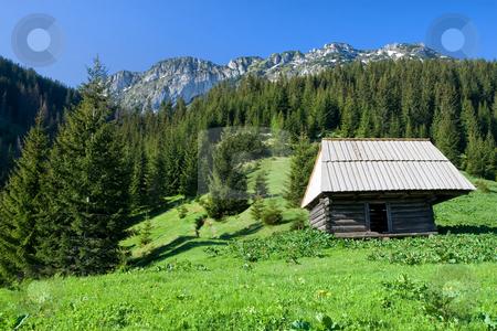 High Mountain Meadow Scenery stock photo, Hut on high mountain meadow  of  the Tatra Mountains in the Tatrzanski National Park, Poland. by Rognar