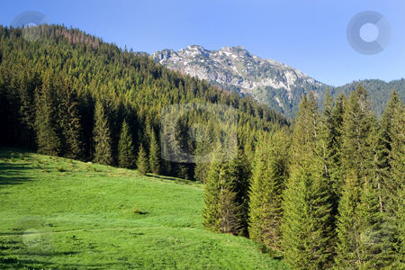 Tatra Mountains Scenery stock photo, Beautiful Tatra Mountain scenery in the Tatrzanski National Park, Poland. by Rognar