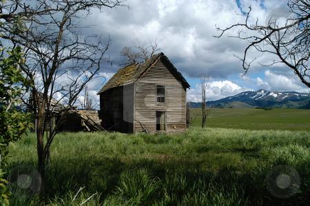 The Old Ireland House stock photo, Idaho, Elmore County, Prairie, The Old Ireland House by David Ryan