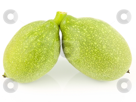 Two unripe walnuts stock photo, Two unrips walnuts on a white background by John Teeter