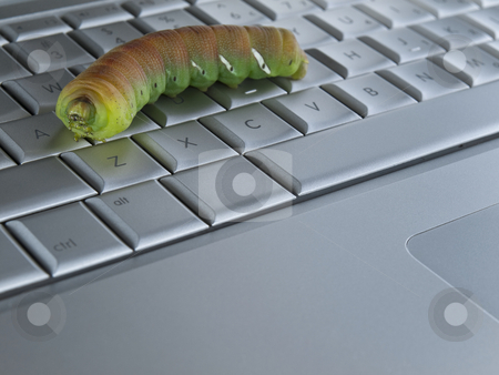 Computer bug stock photo, Macro shot of a caterpillar over a computer keyboard. by Ignacio Gonzalez Prado