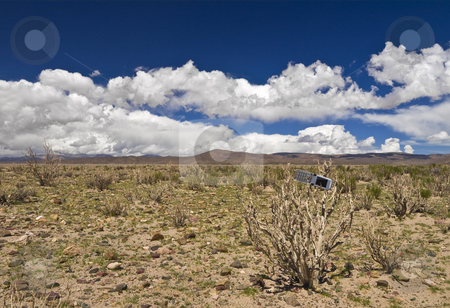 Lost in the desert stock photo, A cellphone abandoned on a dead plant in the desert. by Ignacio Gonzalez Prado