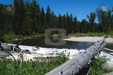 North Fork of the Payette stock photo, USA, Idaho, Payetter River, North Fork above Payette Lake by David Ryan