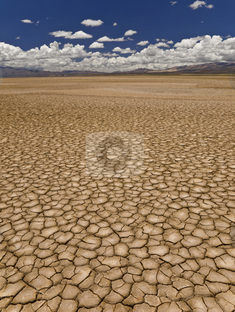 Drought stock photo, Large field of baked earth after a long drought. by Ignacio Gonzalez Prado