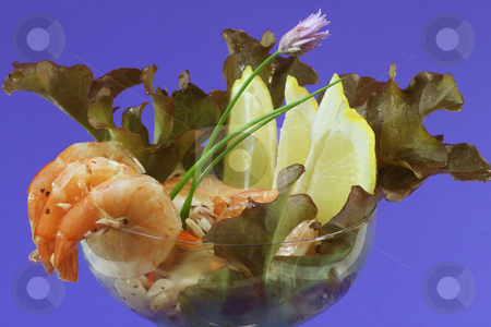 Seafood stock photo, Fresh delicious seafood salad in detail by Birgit Reitz-Hofmann