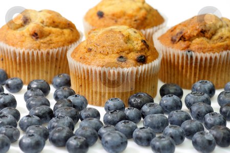 Blueberry muffins stock photo, Muffins with blueberries on bright background by Birgit Reitz-Hofmann