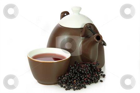 Tea elder stock photo, Closeup from tea elder with fresh fruits. Shot in studio. by Birgit Reitz-Hofmann
