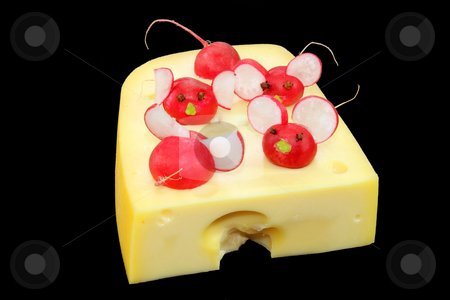 Garnished cheese stock photo, Fresh garnished radish with piece of cheese by Birgit Reitz-Hofmann