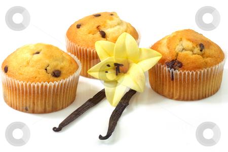 Vanilla muffins stock photo, Muffins with vanilla beans on bright background by Birgit Reitz-Hofmann