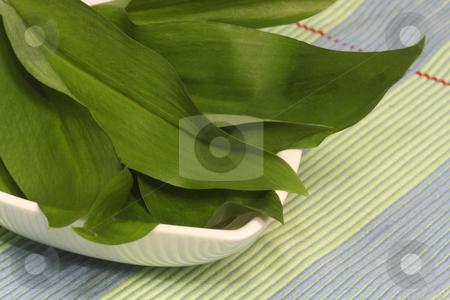 Wild garlic stock photo, Fresh wild garlic herbs on beautiful dishware by Birgit Reitz-Hofmann