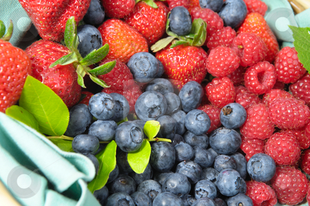 Berries stock photo, Assorted seasonal berries including blueberry, strawberry and raspberry by Lynn Bendickson
