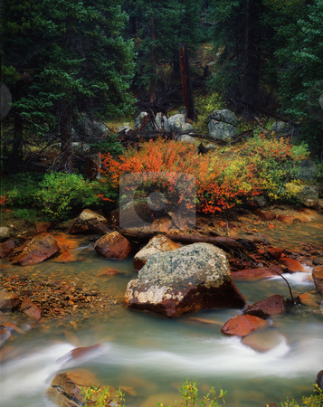 Classic Summer Mountain Scene after Rain, Colorado stock photo, Classic Rocky Mountain scene in spring. Near Independence Pass, Aspen, Colorado. Great for nature, wilderness, adventure, exploration, travel, tourism, backcountry and outdoor recreation themes. by Jeff DeMent