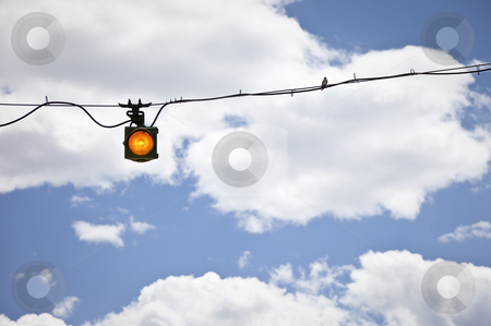 Bird on a Wire stock photo, Yellow warning light somewhere in the USA by mdphot