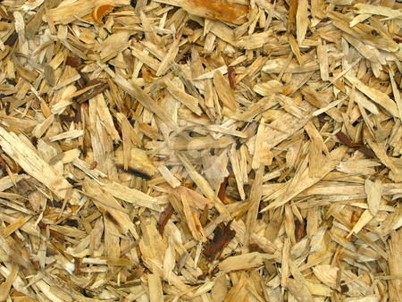 Wood chippings natural abstract background. stock photo, Wood chippings natural abstract background. by Stephen Rees
