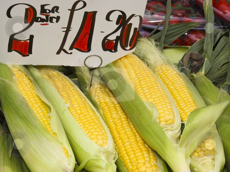 Corn on the cob for sale stock photo, A market stall with corn on the cob for sale by Mike Smith