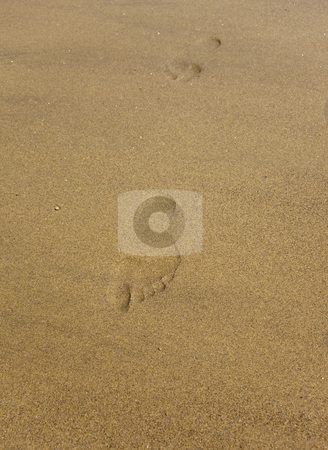 Footprints stock photo, Footprints on a sandy beach in summer by Mike Smith