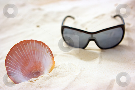Seashell and sunglasses stock photo, Sunglasses and sea shell lying on the sand by Dmitry Rostovtsev