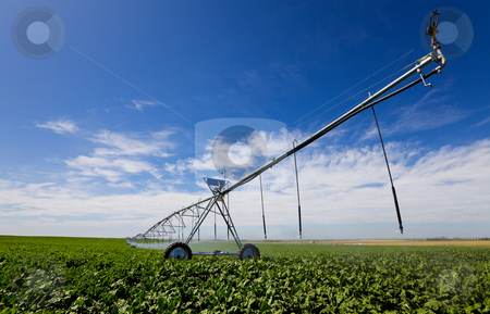 Irrigation tool stock photo, Modern irrigation tool in a turnip field by Steve Mcsweeny