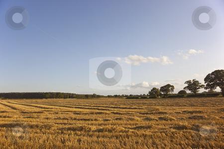 Afternoon light on stubble field stock photo, Late afternoon sunlight on a stubble field by Mike Smith