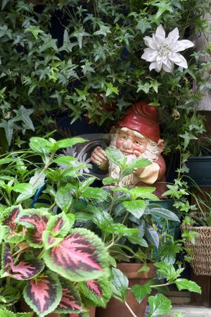 Garden Gnome stock photo, Garden gnome watering plants by Yann Poirier