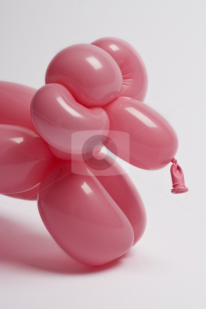 Pink balloon sheep stock photo, Close up of a pink balloon sheep by Yann Poirier
