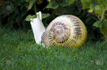 Garden decorative statue stock photo, Snail garden decorative statue on green grass by Desislava Dimitrova