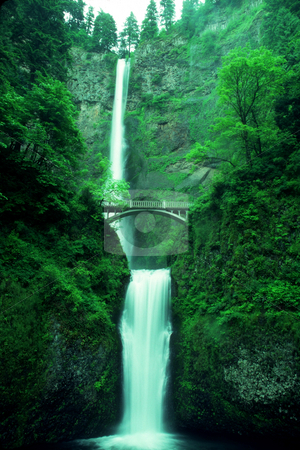 Multnomah Falls stock photo, USA, Oregon, Mt. Hood National Forest, Multnomah Falls by David Ryan