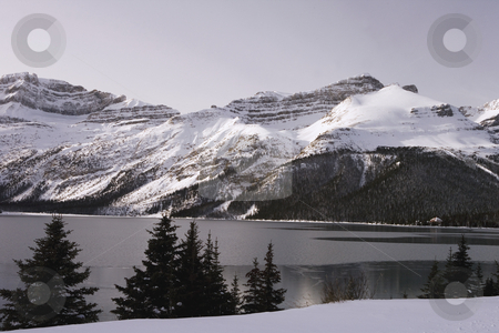 Winter Lake Scene stock photo, Lake freezing over in cold weather by Sharron Schiefelbein