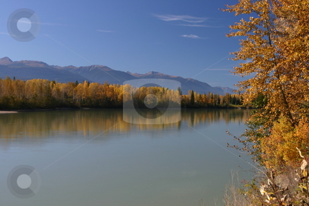 Autumn on the Fraser River stock photo, Autumn photo of the Fraser River in BC by Sharron Schiefelbein