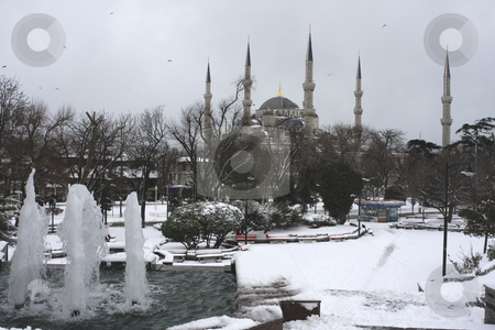 339 Snow covering the Blue Mosque in Istanbul Turkey stock photo, First snow in 5 years in Istanbul Turkey covers the Blue Mosque (Feb 2008) by Sharron Schiefelbein