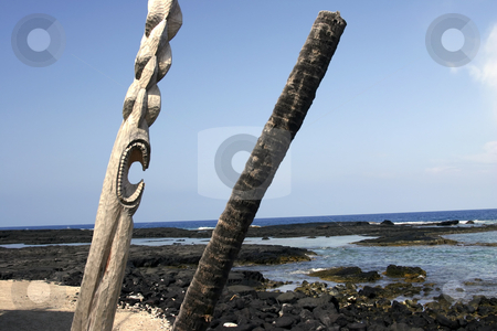 Caved poles in Hawaii stock photo, Caved poles on the edge of the ocean by Sharron Schiefelbein