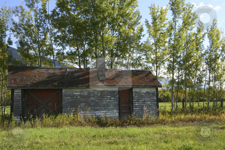 Old building surrounded by autumn colors stock photo, Paint peeling off an old building by Sharron Schiefelbein