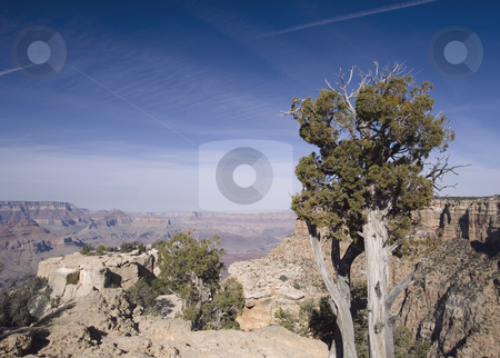 390 View of the Desert in Uath stock photo, A  beautiful of the desert in Utah's National Park by Sharron Schiefelbein
