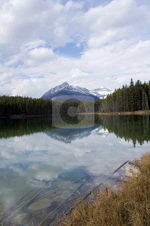 136 Autumn in a Lake scene stock photo, Lake around Banff Area by Sharron Schiefelbein